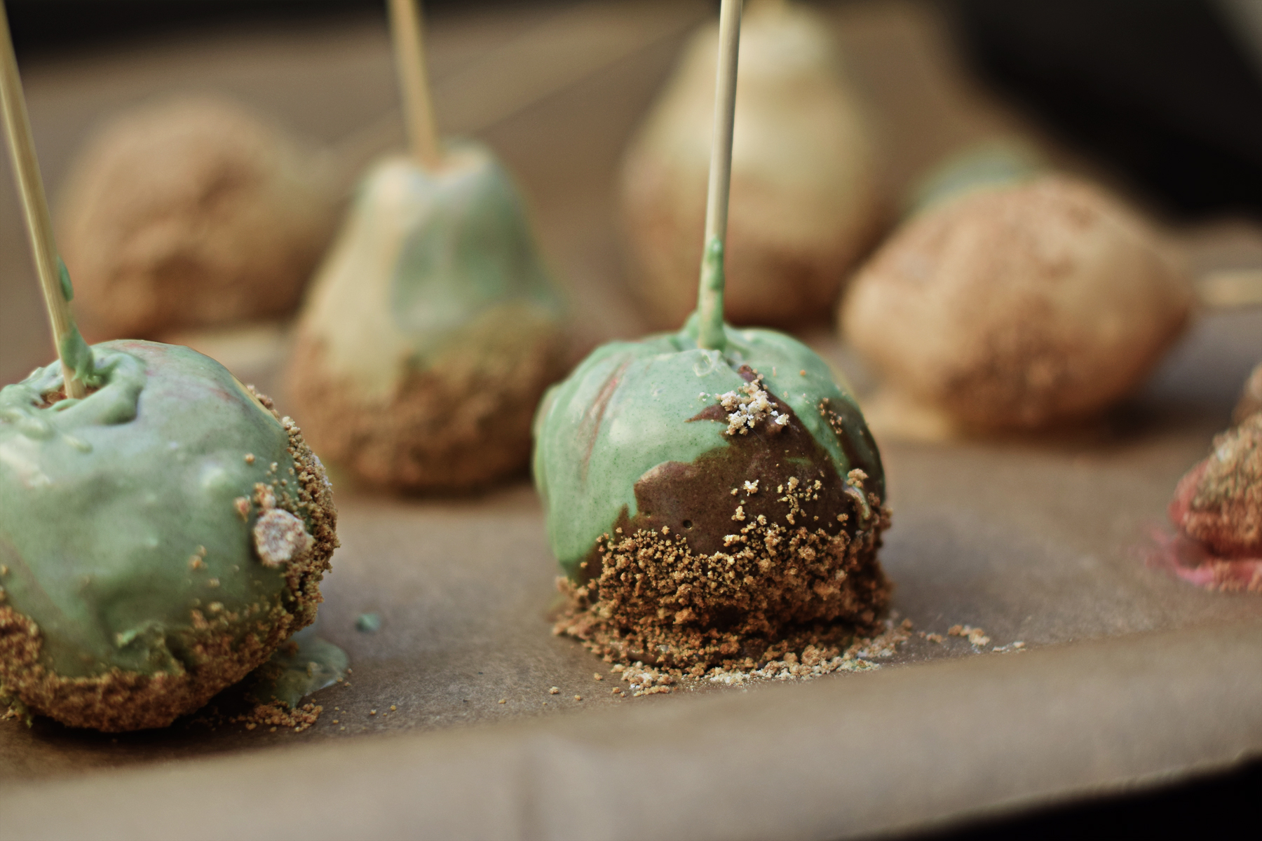 Thanksgiving Chocolate Covered Cake Pops | Chapters by S.