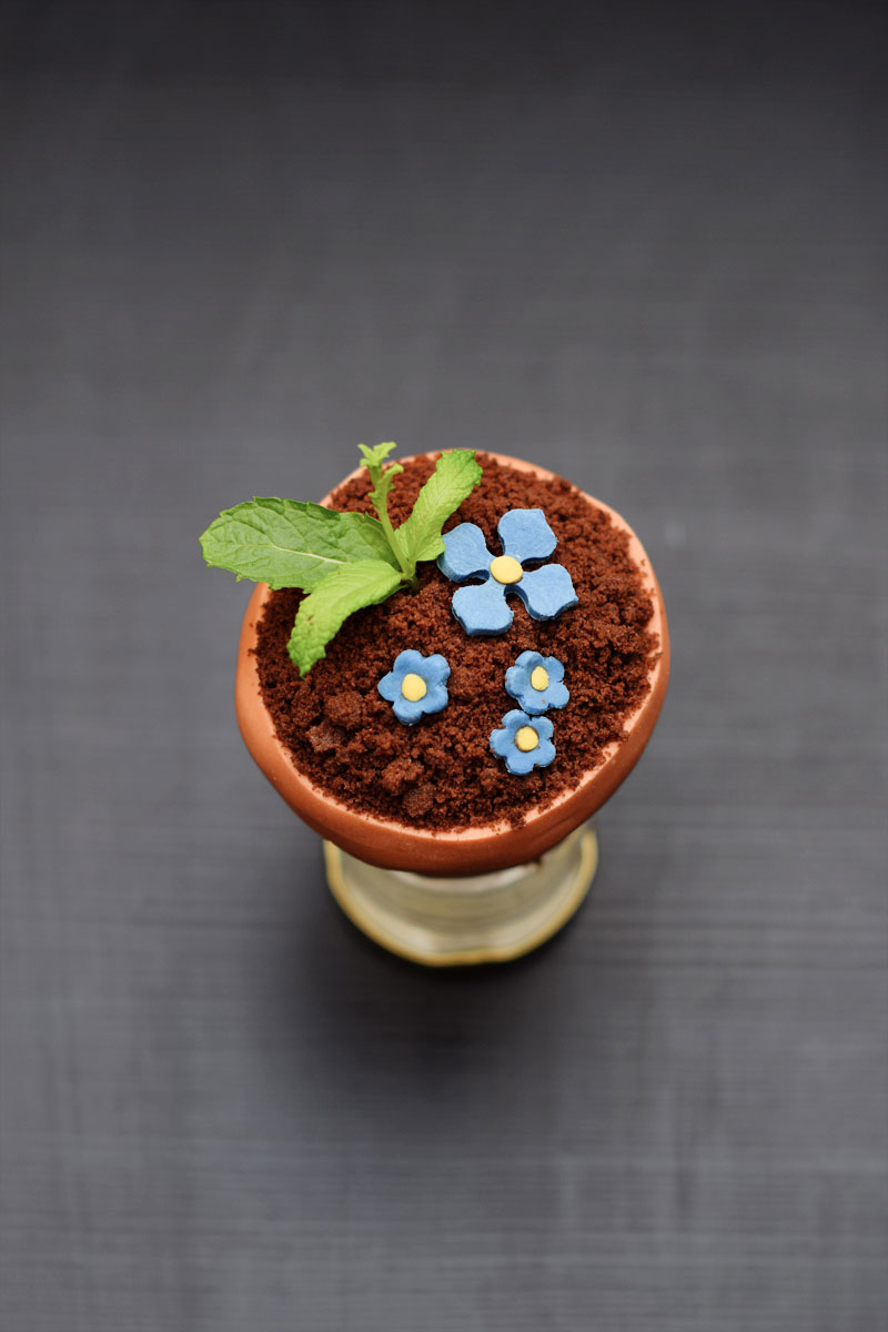 Mother's Day Flower Pot Cake | Chapters by S.