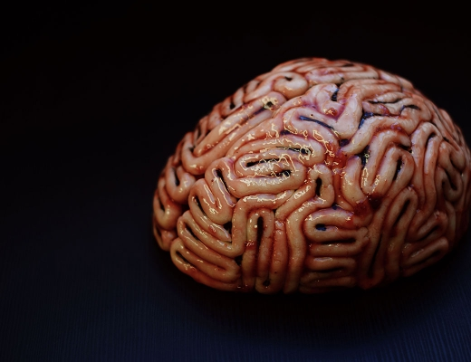 Halloween Brain Cake | Chapters by S.